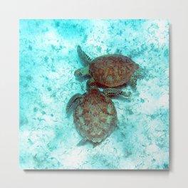 Watercolor Turtle, Green Turtle 13, St John, USVI Metal Print