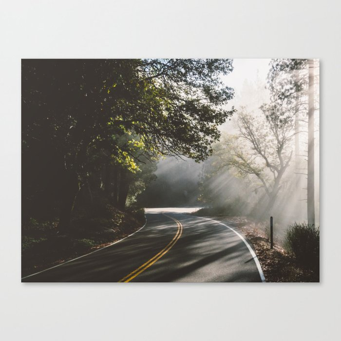 road to life Canvas Print