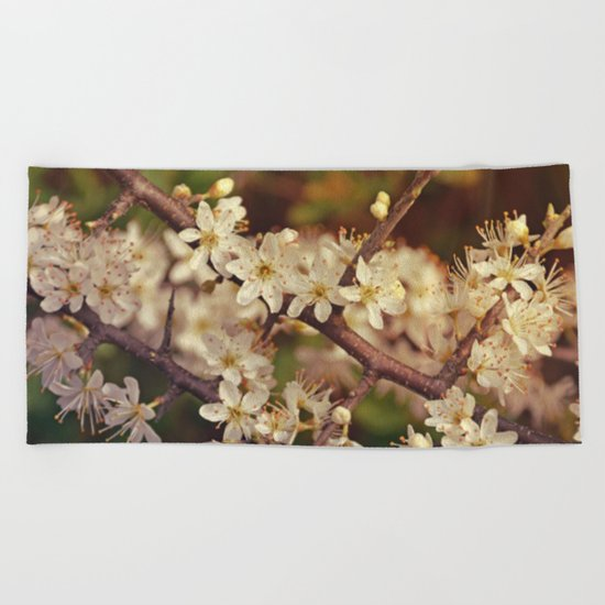 Sunny White Cherry Blossom Beach Towel