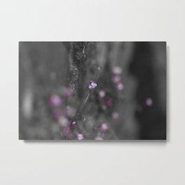 Flower on the Rocks Metal Print