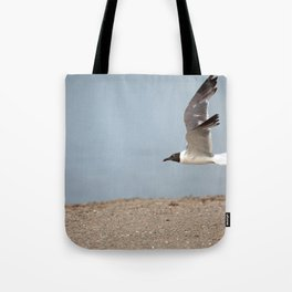 Laughing Gull in Flight Tote Bag