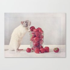Snoozy Canvas Print