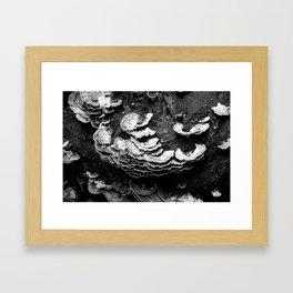 Look Below Framed Art Print