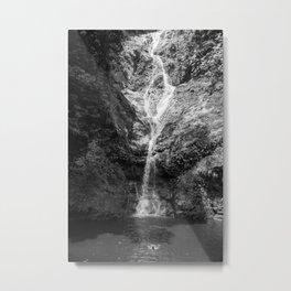 Habio Metal Print