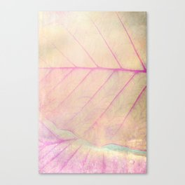 Pink Leaf Abstract Canvas Print