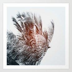 Flare #3 Art Print