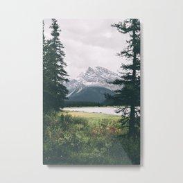 Alberta Metal Print
