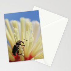 Beetle on kitchen brush Stationery Cards