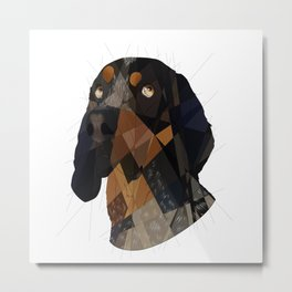 Blue Tick Coonhound Metal Print