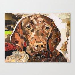 Pippen Canvas Print