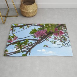 Pink Canopy Rug