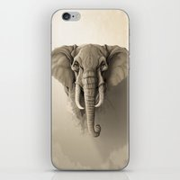elephant iPhone & iPod Skins featuring Elephant by Rafapasta
