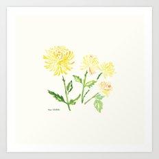 Yellow Chrysanthemums Art Print
