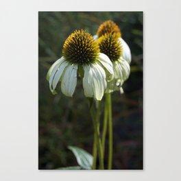 Flower Glow Canvas Print