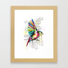 Soaring Wax-eye Framed Art Print