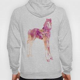 Standing Foal Hoody