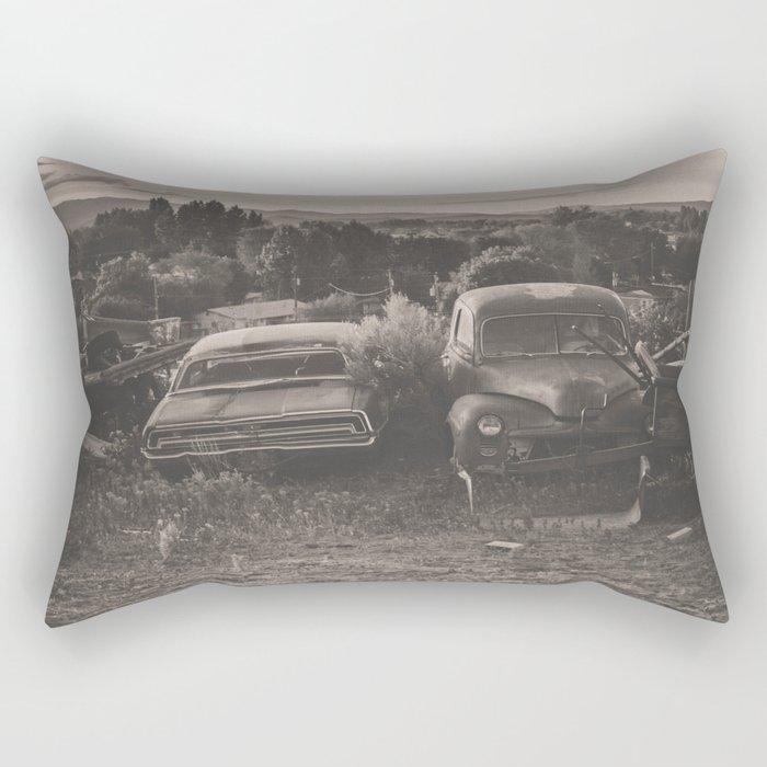 Baker Ranch Rectangular Pillow