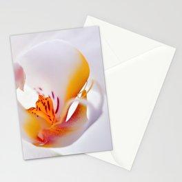 Orhid white macro 244 Stationery Cards