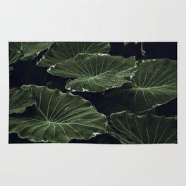 tropical xx Rug