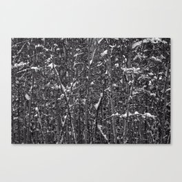 Snowy Abstract Canvas Print