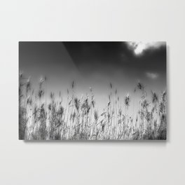 Somewhere Only We Know Metal Print