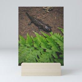 Salamander Mini Art Print
