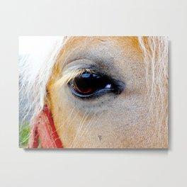 Innocent Equestrian Eye Metal Print