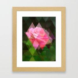Pink Roses in Anzures 3 Art Triangles 1 Framed Art Print