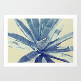 Agave II Art Print