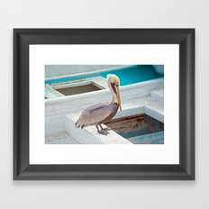 PELICAN POSE Framed Art Print