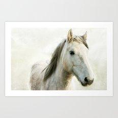 White Horse Portrait Art Print