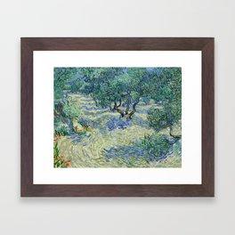 Olive Orchard by Vincent van Gogh Framed Art Print