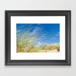 Vibrant Sand dune grasses against blue sky, Fistral Beach Framed Art Print