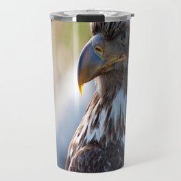 Young Bald Eagle Travel Mug