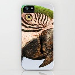Macaw Close up iPhone Case
