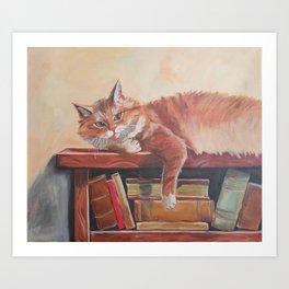 Red cat on a bookshelf Art Print