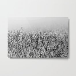 Black and White Snowy trees Metal Print