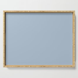 PPG Glidden Trending Colors of 2019 Rendezvous Pastel Blue PPG1160-3 Solid Color Serving Tray