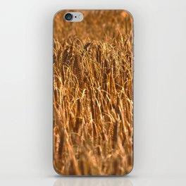 Early Summer iPhone Skin
