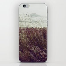 Autumn Field II iPhone & iPod Skin