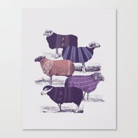 sheep Canvas Prints featuring Cool Sweaters by Jacques Maes