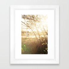 a little birdhouse Framed Art Print