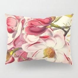 Beautiful Pink Flower Vintage Himalayan Plant Illustration Drawing Pillow Sham