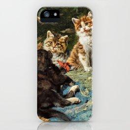 Five Cats In A Basket - Julius Anton Adam iPhone Case
