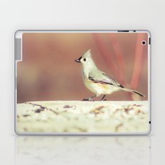Little Bird 02 Laptop & iPad Skin
