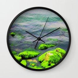 Natural green moss at beach rock with blue sea at Ly Son island, vietnam Wall Clock