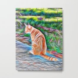 Orange cat sitting on a path in rural Queensland, Australia Metal Print