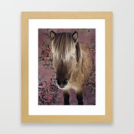 Icelandic pony with rosy posies Framed Art Print