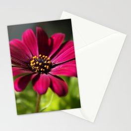 pink beauty Stationery Cards