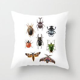 Moth insect butterfly bug insect gift Throw Pillow